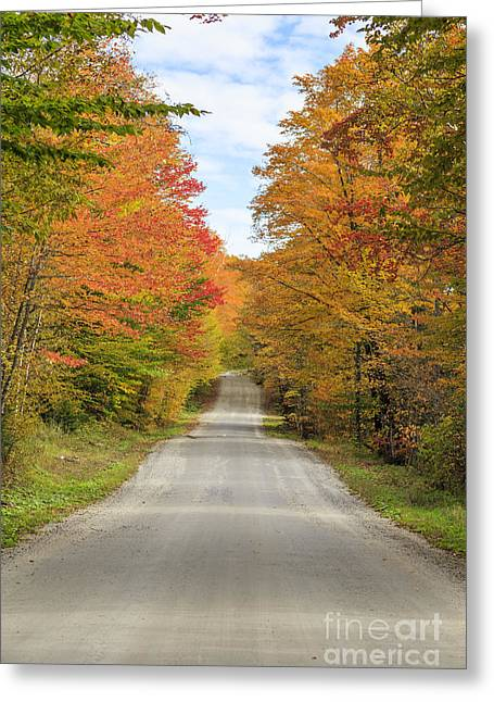 Fall Foliage On The Back Roads Of Vermont Greeting Card by Edward Fielding