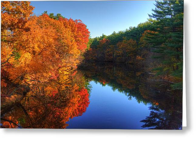 Fall Foliage River Reflections Greeting Card by Joann Vitali