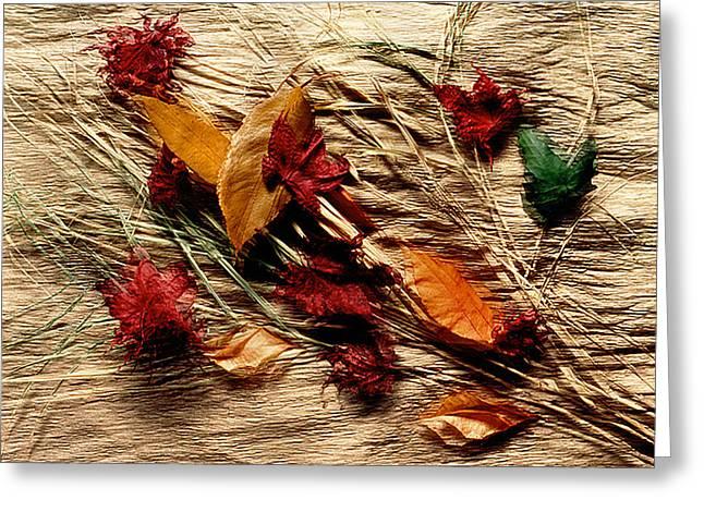 Fall Foliage Still Life Greeting Card