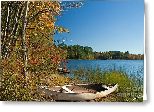 Greeting Card featuring the photograph Fall Fun by Alana Ranney