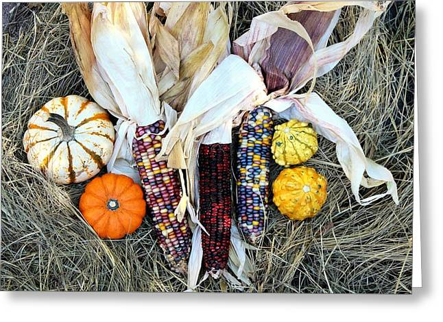 Greeting Card featuring the photograph Fall Harvest On Hay by Sheila Brown