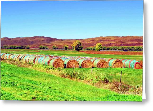 Fall Hayfield Greeting Card by Desiree Paquette