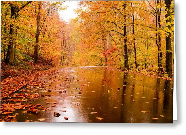 Fall Holidays Greeting Card by Mary Timman
