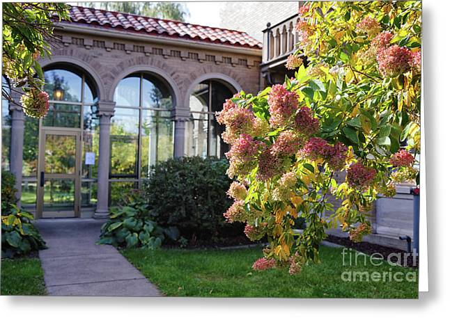 Fall Hydrangeas At St Marys Chapel Of The Angels Winona Mn Greeting Card