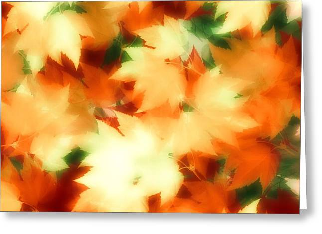 Fall II Greeting Card