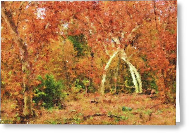 Tree Huggers Greeting Cards - Fall Impression Greeting Card by Kristin Elmquist