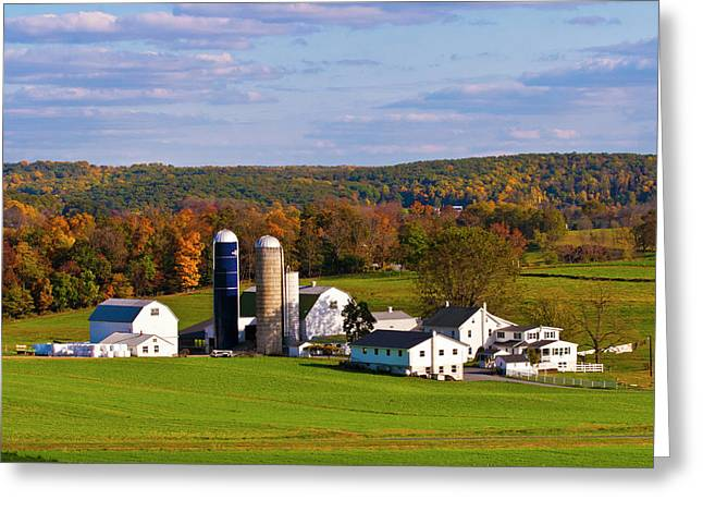 Fall In Amish Country Greeting Card by Lou Ford