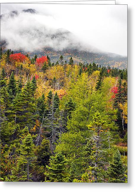 Fall In Baxter State Park Maine Greeting Card by Brendan Reals