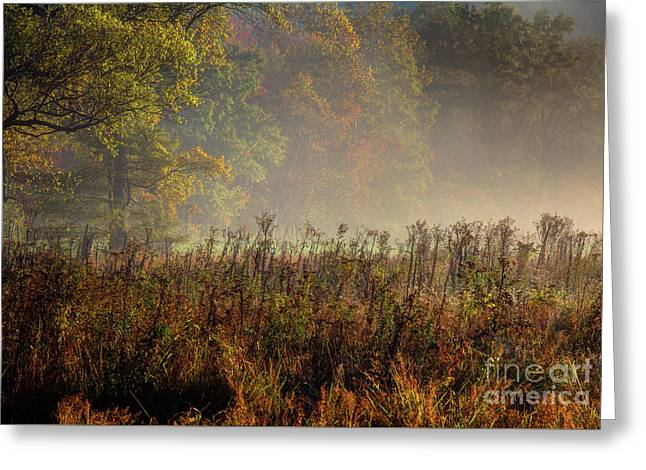 Greeting Card featuring the photograph Fall In Cades Cove by Douglas Stucky