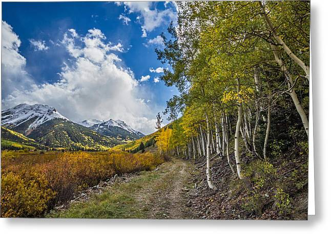 Greeting Card featuring the photograph Fall In Colorado by Wesley Aston