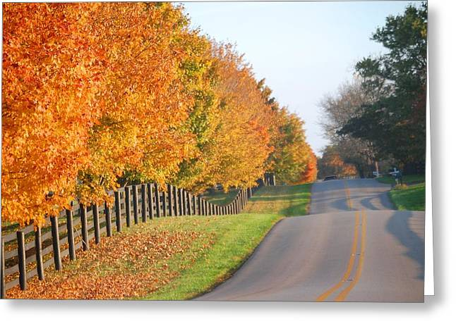 Fall In Horse Farm Country Greeting Card