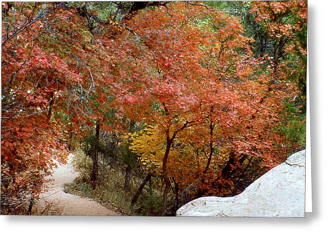 Greeting Card featuring the photograph Fall In Mammoth by Gary Brandes