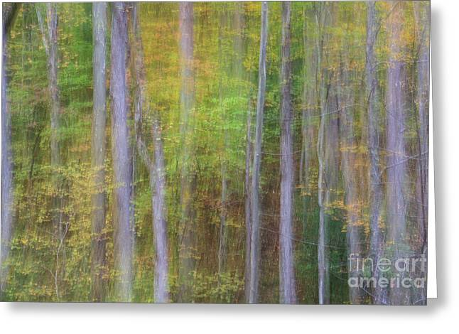 Fall In Motion Greeting Card by Jennifer Ludlum