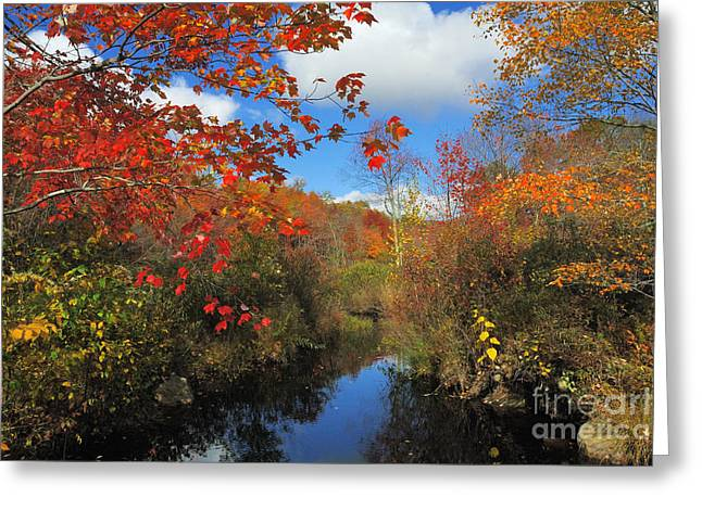 Fall In New England 2 Greeting Card