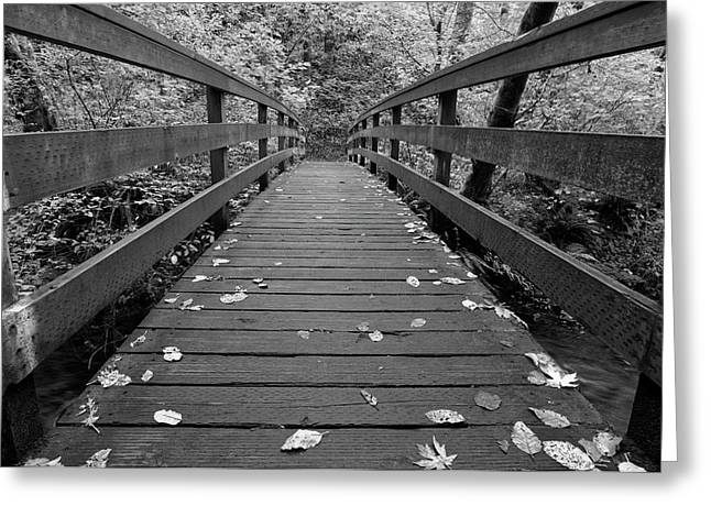 Greeting Card featuring the photograph Fall In Oregon Bw by Jonathan Davison