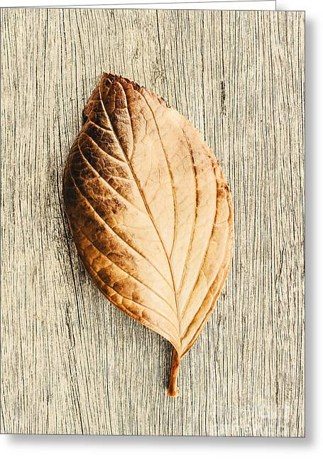 Fall In Perfect Detail Greeting Card