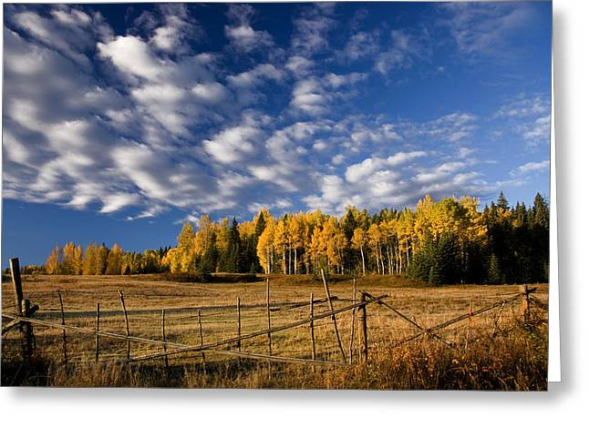 Fall In The Cariboo Greeting Card