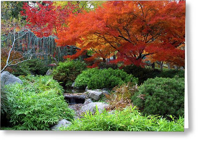 Fall In The Japanese Garden II Greeting Card