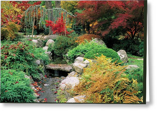 Fall In The Japanese Garden Greeting Card