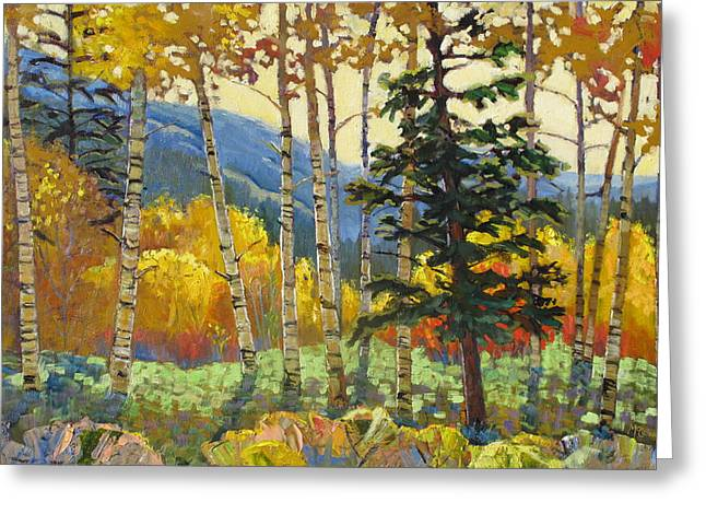 Fall In The San Juans Greeting Card by Susan McCullough