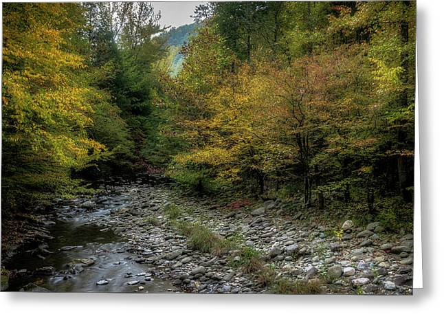 Fall In The Smokies Greeting Card by Mike Eingle