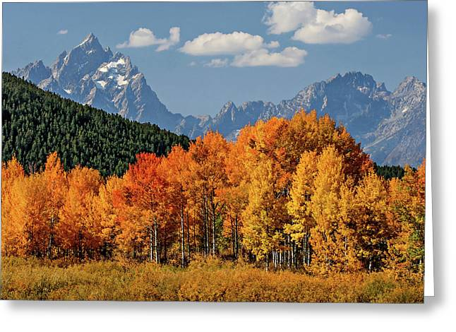 Greeting Card featuring the photograph Fall In The Tetons by Wesley Aston