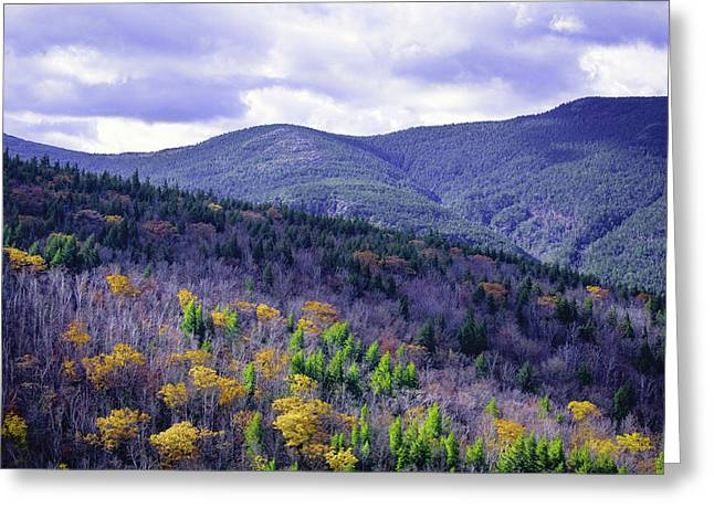 Fall In The White Mountains Greeting Card