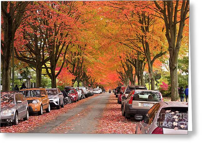 Fall In Vancouver 2017 1 Greeting Card