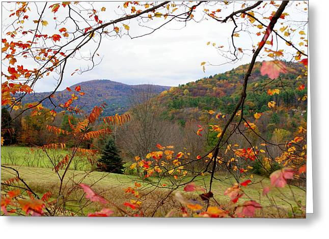 Fall In Vermont Greeting Card by Lois Lepisto