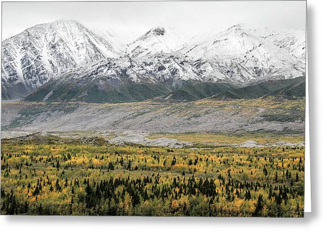 Fall In Wrangell - St. Elias Greeting Card