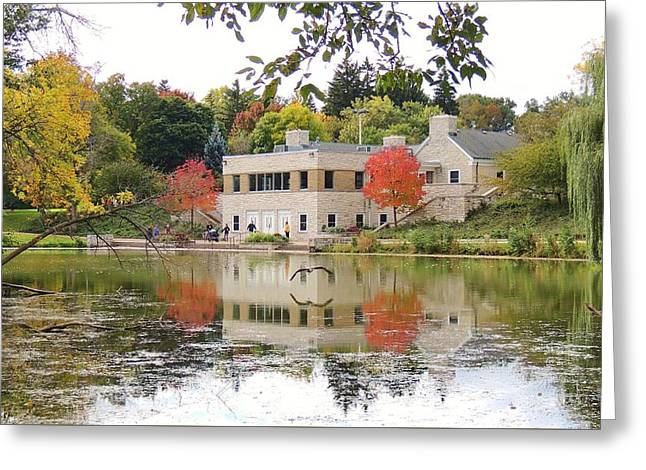 Fall Into Pond Life Greeting Card