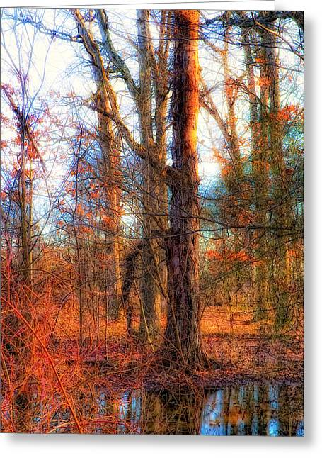 Fall Is Calling Greeting Card by Michael Putnam