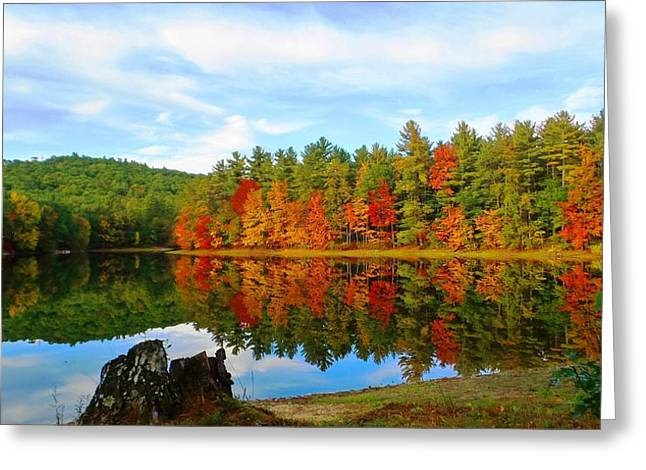 Fall Is Coming Greeting Card