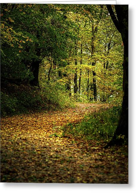 Fall Is Just Around The Corner Greeting Card
