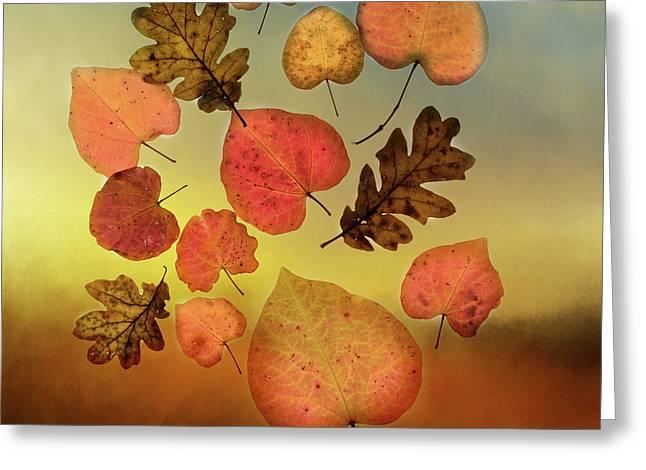 Fall Leaves #1 Greeting Card