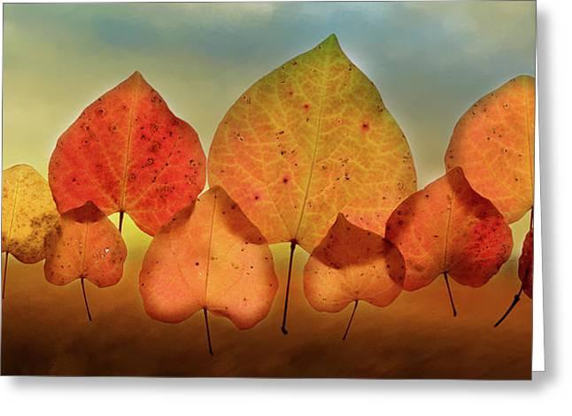 Fall Leaves #3 Greeting Card