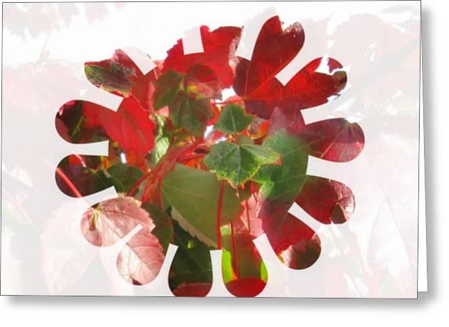Fall Leaves #9 Greeting Card