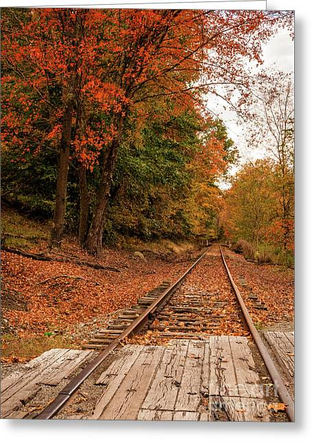 Fall Leaves And Train Track Wv Greeting Card by Kathleen K Parker