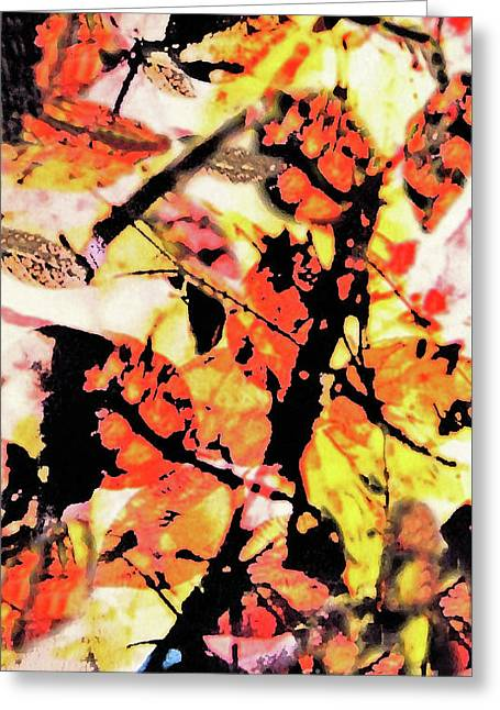 Fall Leaves At Sunset Greeting Card