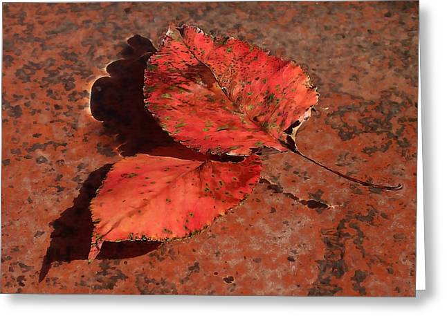 Fall Leaves Floating Greeting Card by Art Block Collections