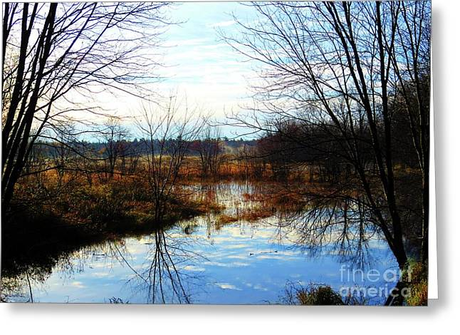 Fall Morning At Deer Camp Greeting Card by Desiree Paquette
