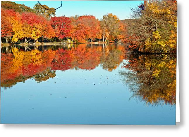 Fall Morning In East Lyme 1 Greeting Card by Gerald Mitchell