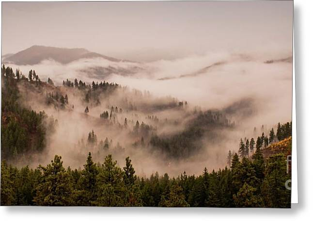 Fall Mountain Fog Greeting Card by Andrea Goodrich