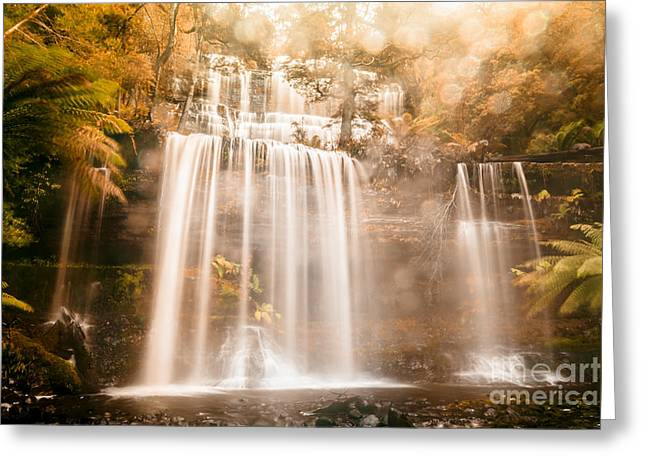 Fall Of Autumn  Greeting Card by Jorgo Photography - Wall Art Gallery