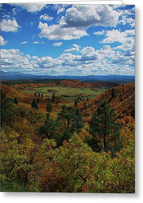 Greeting Card featuring the photograph Fall On Four Mile Road by Jason Coward