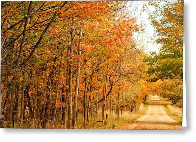 9012 - Fall On Murphy Lake II Greeting Card