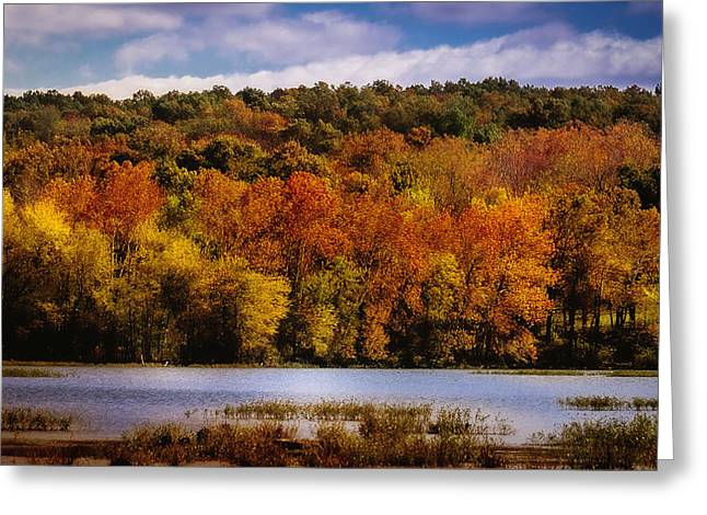 Fall On Springfield Lake Greeting Card