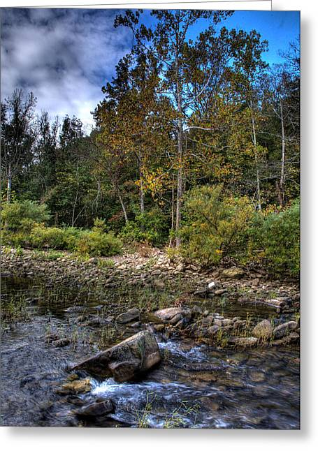 Greeting Card featuring the photograph Fall On The Hailstone by Michael Dougherty
