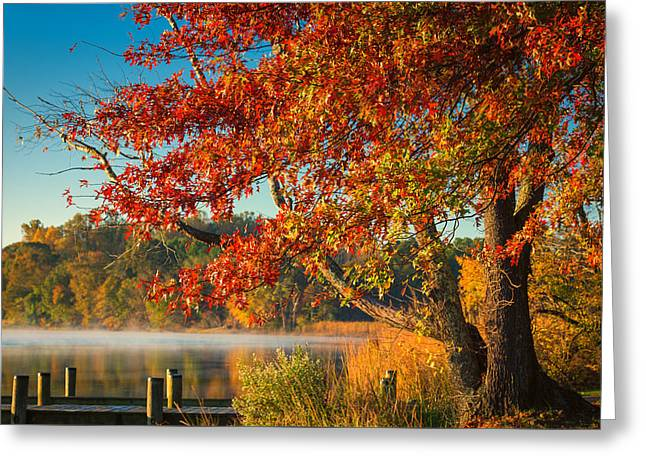 Greeting Card featuring the photograph Fall On The Patuxent by Cindy Lark Hartman