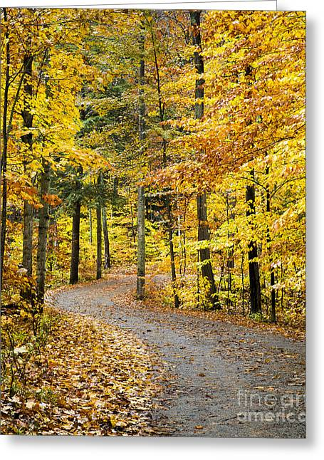 Fall On The Road To School Lake Greeting Card by Twenty Two North Photography